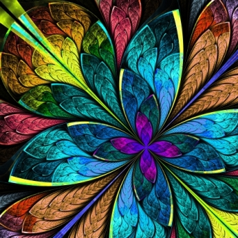 25284089 - beautiful multicolor fractal flower  computer generated graphics
