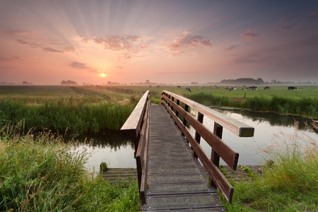 43970359 - beautiful sunrise over bike bridge in farmland, netherlands
