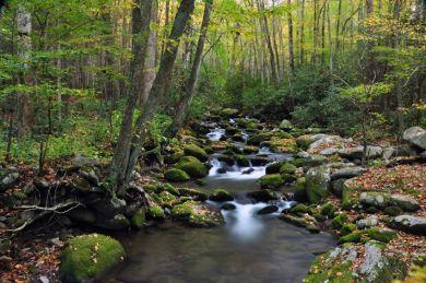 16196623 - water flows down a mountain stream