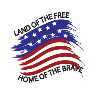 49400639 - united states of america land of the free home of the brave