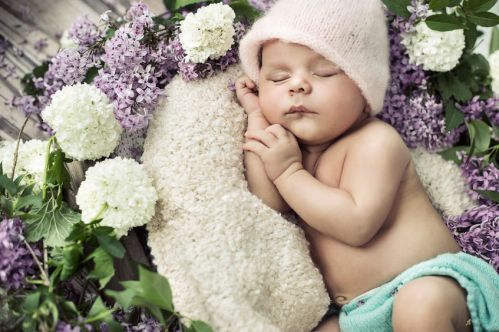 cute boy sleeping among the flowers
