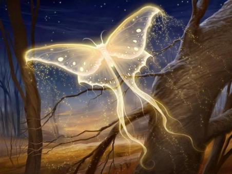 Butterfly Fire