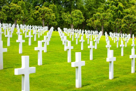 Military cemetery with crosses on green grass