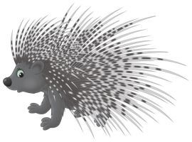 23291225 - porcupine